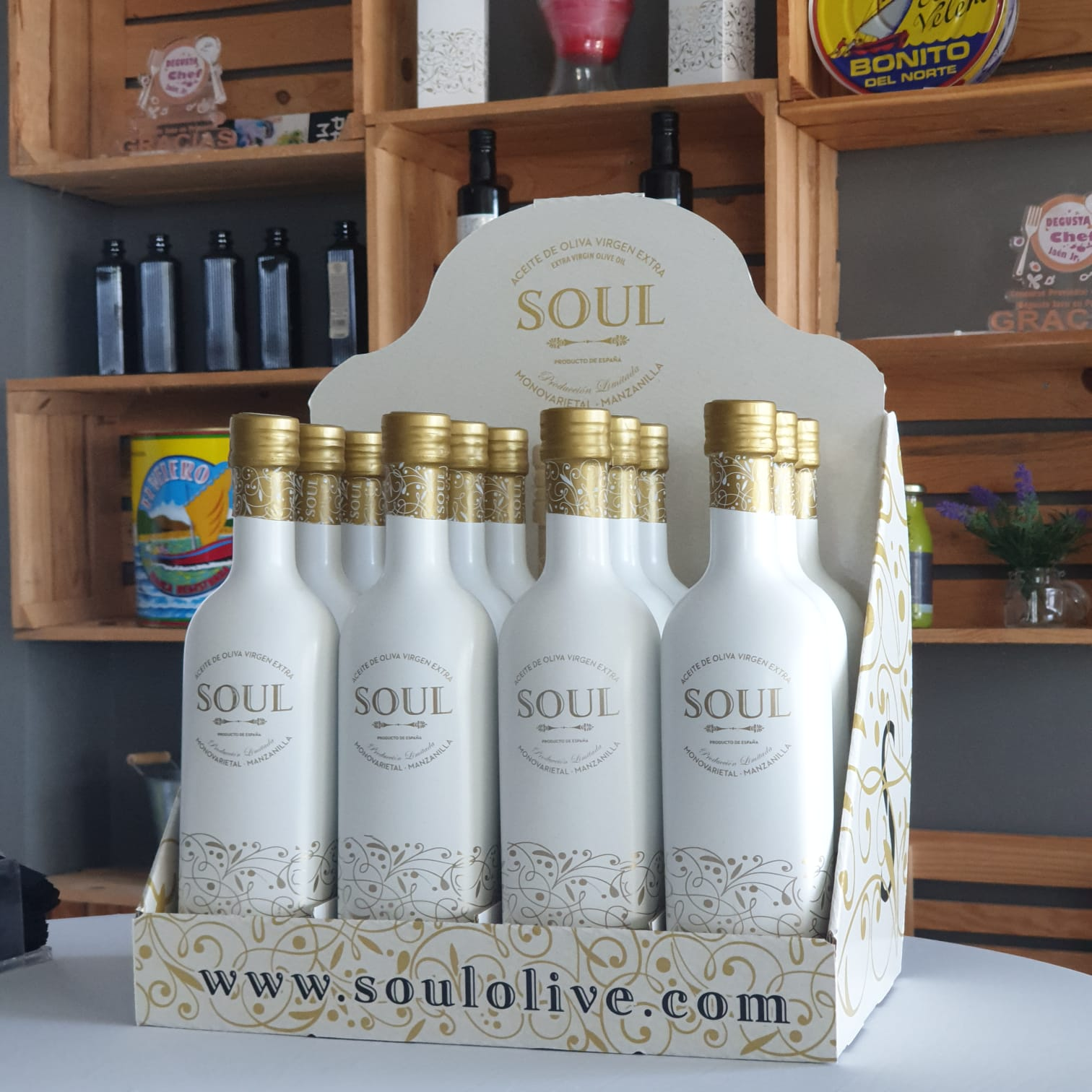 Nuevo Expositor Soul Olive